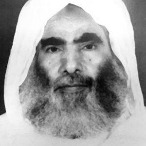 الشيخ محمد نور بن سيف المهيري